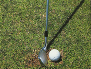 Playing_from_A_Divot